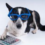 Kevin Roberts' Under-Utilized Pet Tax Deductions